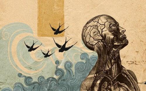 Menneske med synlige rødder og fugle og bølger omkring sig