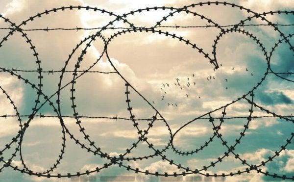 hjerte i pigtråd