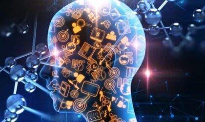 Schweizerkniv teorien: Modularitet af sindet