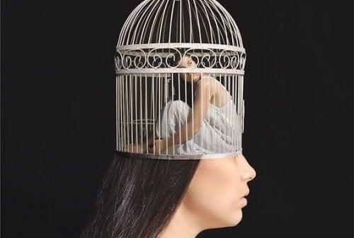kvinde i et bur symboliserer casen om Aimée
