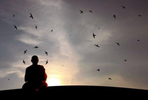 Munk mediterer foran himmel med fugle