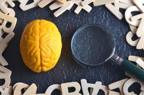 Hvad er eksperimentel psykologi?