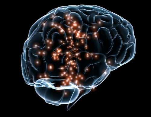 Neuroner lyser op i hjerne