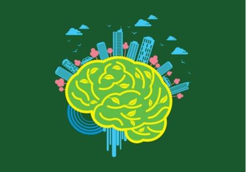 Neuroarkitektur: Miljøets magt over hjernen