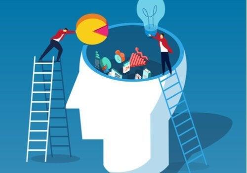 John Swellers kognitive belastningsteori