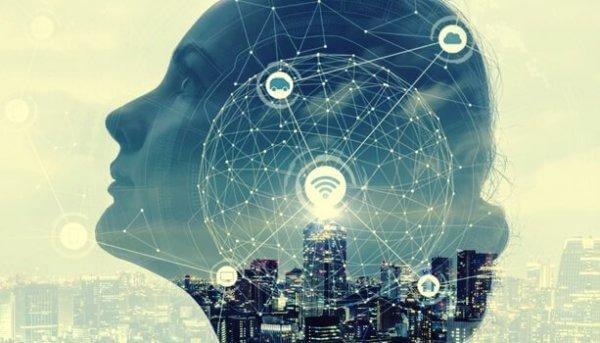 Netværk i kvindes hoved illustrerer, at det præfrontale cortex har forbindelser til flere andre hjerneregioner
