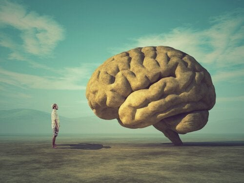 En mand står og stirrer på sin egen hjerne
