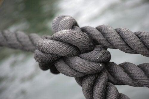 et reb, der symboliserer undertrykkelse