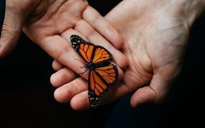 Terapeutisk akkompagnement: Et uundværligt værktøj