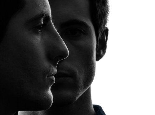 Ansigterne hos identiske tvillinger