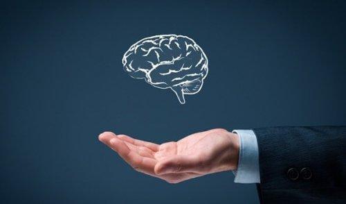 De 6 gyldne regler ved simpel intelligens