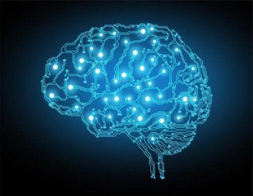 Blå lys i hjernen illustrerer udøvende funktioner