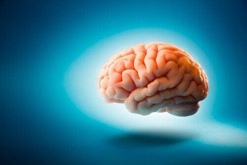 Billede af en hjerne på en blå baggrund