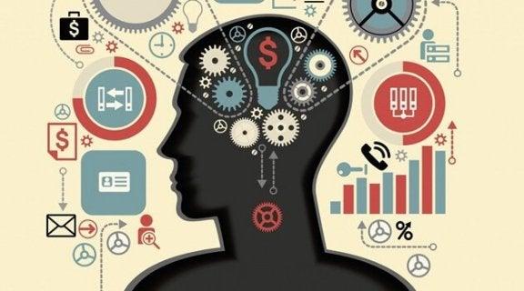 Udøvende funktioner: Hjernens mentale evner