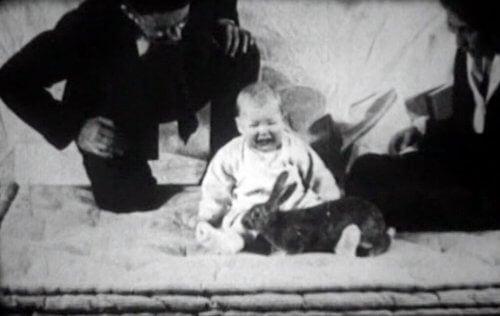 Lille Albert græder over en kanin