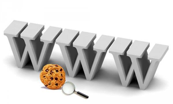 Cookies gemmer personlige oplysninger på nettet