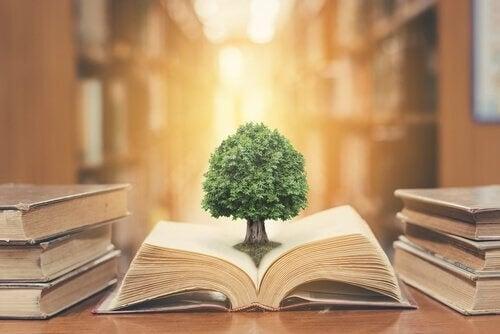 Træ, der vokser ud af en bog