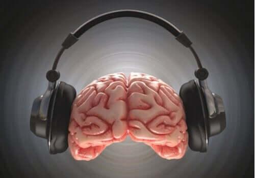 Hjerne med høretelefoner illustrerer, hvordan lydspor påvirker hjernen