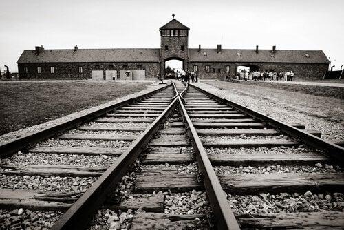 En lille løgn betød overlevelse i koncentrationslejren