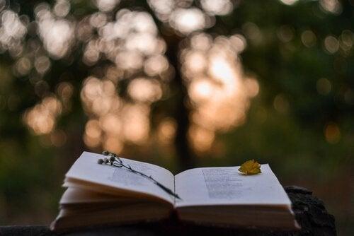 En bog med et blad og en blomst