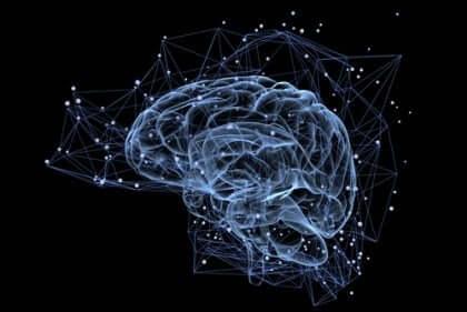 Forbindelser i den menneskelige hjerne som en del af Human Connectome Project