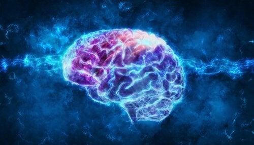Mangel på søvn påvirket hjernen negativt, hvilket vises med blå lys