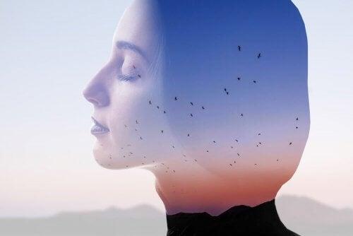 Kvindes silhuet foran landskab med bjerge og fugle