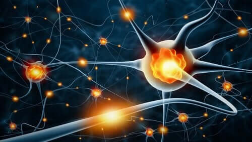 animation af nerveaktivitet
