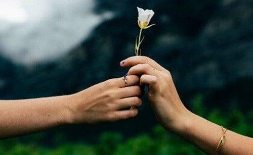 To hænder, der begge vil tage rose, illustrerer selviskhed i kærlighed
