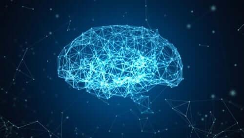 Blå hjerne projekt: En rekonstruktion af hjernen