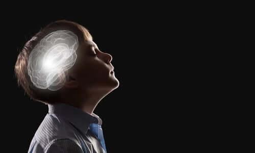 Intuitionens neurobiologi illustreres som hjerne, der lyser op