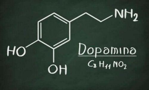 Den kemiske formulat for dopamin kan hjælpe os med at svare på, om vi bør kalde afhængighed for tilknytning