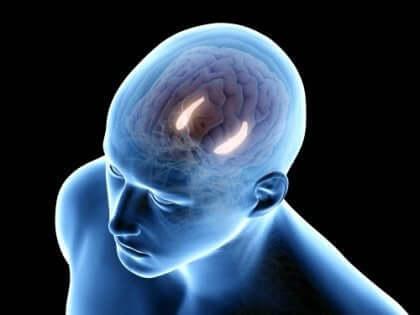 figur med lys i dele af hjernen