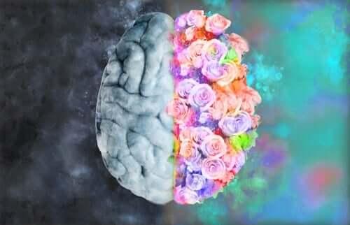 Neuroæstetik: Når neurologi og kunst mødes
