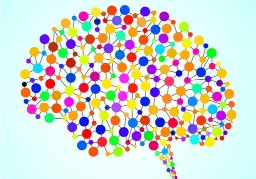 97 tidligere ukendte områder i hjernen