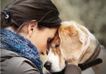 Kvinde med pande mod hunds pande viser vigtigheden af terapihunde til personer med borderline