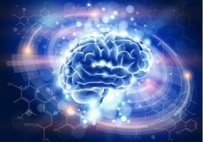 Oplyst blå hjerne viser, hvad der sker i hjernen
