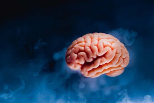 Hjerne svæver foran blå og sort baggrund