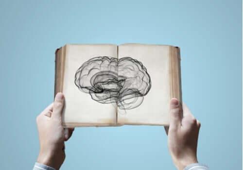Neurovidenskab: Kan du arve viden?