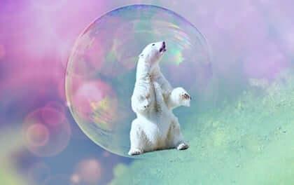 At leve et kreativt livt: Isbjørn i bobble