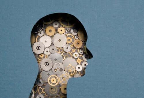 Mekanismer i hjernen som studeret af Jean Laplanche