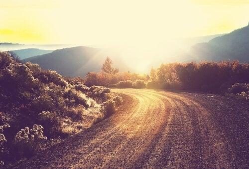 vej i bjerge