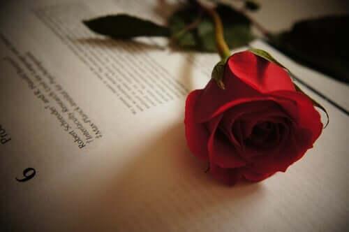 Fem kærlighedscitater af Tirso de Molina