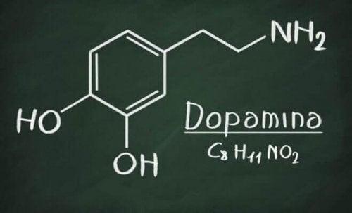 Dopamin er blandt de forskellige typer af monoaminer