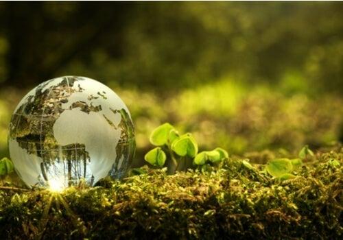 Hvordan kan jeg bidrage til et bedre miljø?