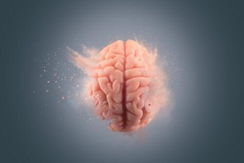 Effekten af kokain på hjernen