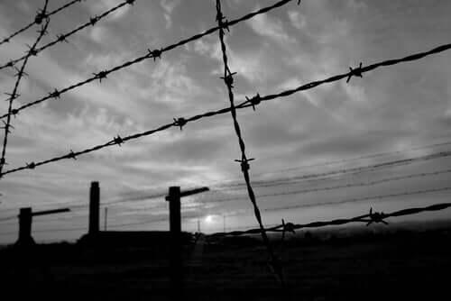 Hegn om koncentrationslejr
