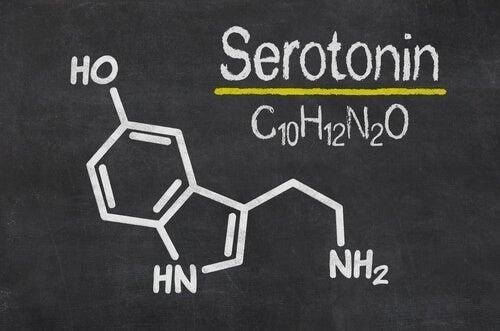 Serotonin er en monoamin