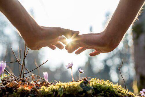 to hænder, der næsten rører naturen