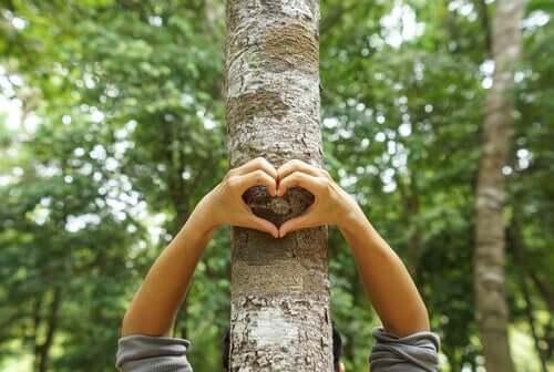 Person laver hjerte foran træ som symbol for ønsket om et bedre miljø